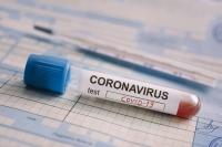 С 19 января въезд  Болгарию только с отрицательным тестом на коронавирус