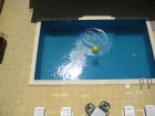 квартиры в равде - бассейн
